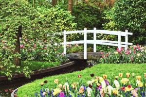 Автополив для газона и цветов